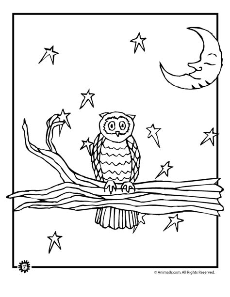 night animals coloring page owl coloring pages woo jr kids activities