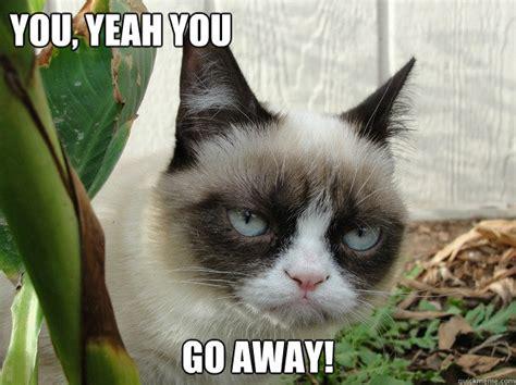Go Away Meme - you yeah you go away grumpy cat2 quickmeme