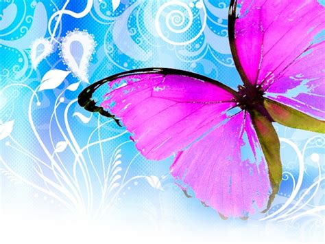butterfly background hairstyles cuts tips flying butterfly backgrounds