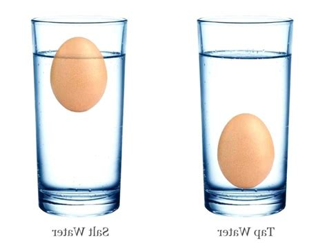 egg test water sink float egg sink or float fresh eggs do eggs sink or float