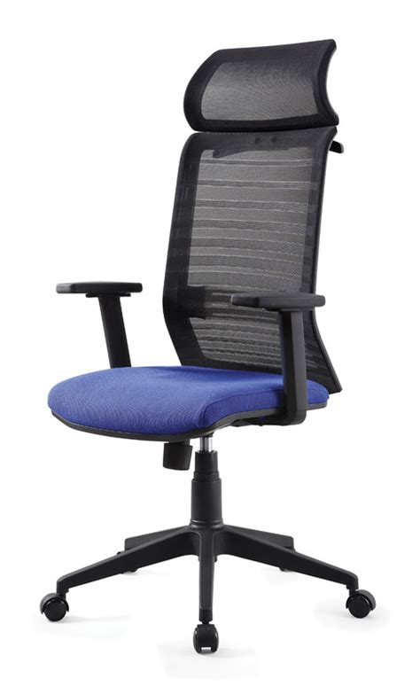 Fashionable Office Chairs by Fashionable Executive Ergonomic Mesh Office Chair