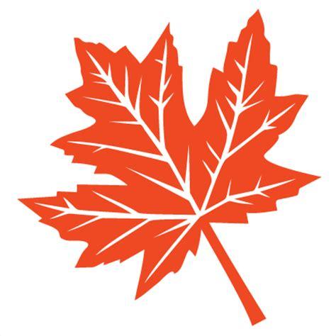 file maple leaf svg fall leaf svg scrapbook cut file clipart files for