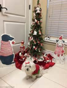 dog themed home decor pet owners share festive pictures of their dogs at