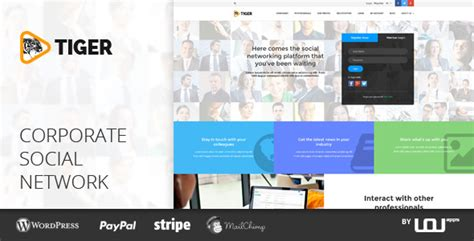 network design company profile tiger social network theme for companies professionals