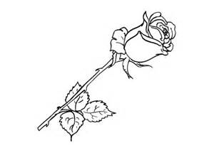Galerry rose flower coloring pictures