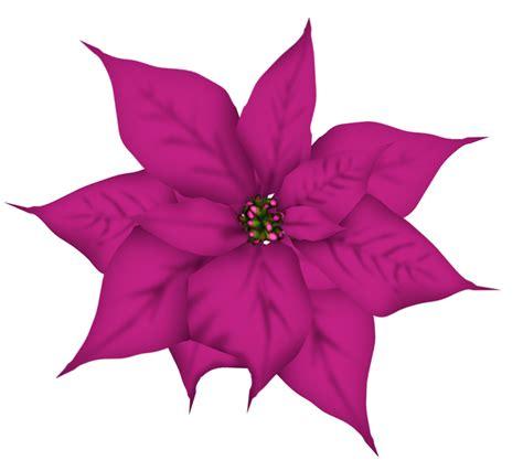 imagenes flores de navidad gifs y fondos pazenlatormenta flores de navidad