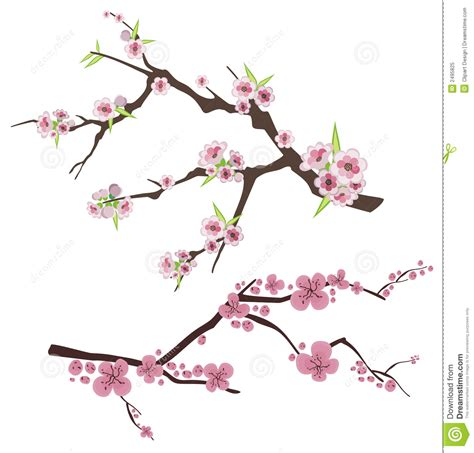 Design Flower Branch | floral branch series royalty free stock photo image 2495825