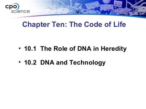 chapter 10 section 1 ch10 codeoflifesection1