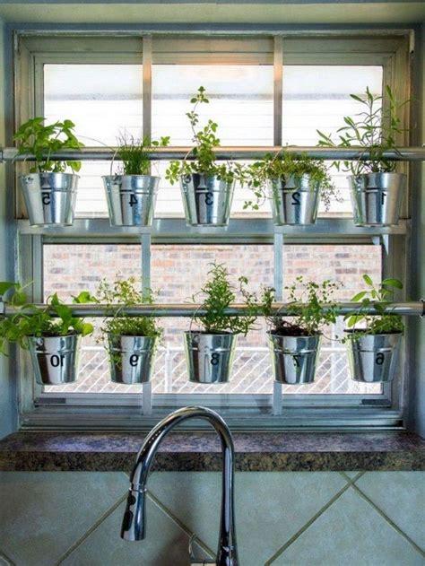 lovely   beauty indoor gardening ideas