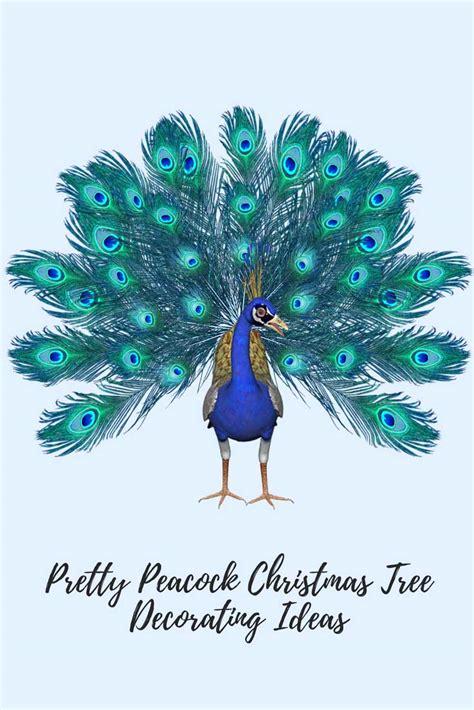 Beach Bedroom Decorating Ideas peacock christmas tree decorating ideas for peacock