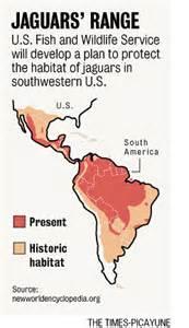 Map Of Jaguar Habitat Jaguar Habitat Project Omits Historic Stalking Grounds In