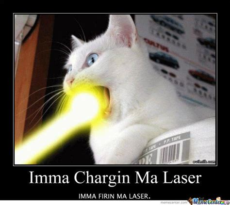 Lazer Tag Meme - cat laser by recyclebin meme center