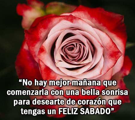 imagenes de feliz sabado con rosas rojas imagenes de rosas con frases de feliz sabado rosas de amor