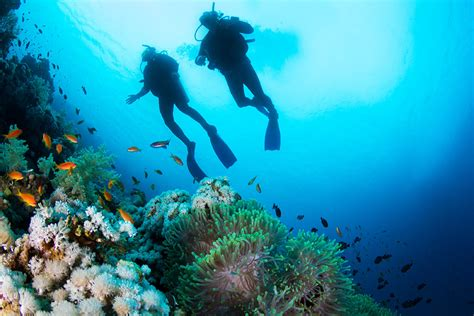 le dive adventure travel vacations diving adventure wellness