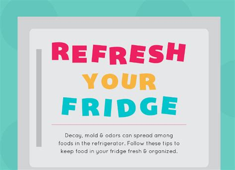 How To Keep Kitchen Clean And Organized by How To Keep Your Refrigerator Clean And Organized Yayvo