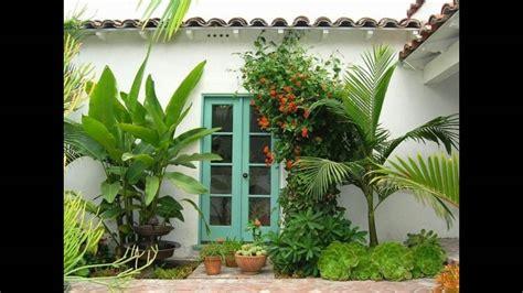 plantas para jardines plantas para jardines tropicales youtube