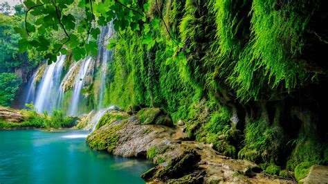 wallpaper 4k forest wallpaper tropical forest waterfall hd 4k nature 6161