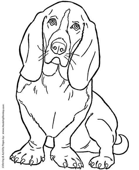 dog coloring pages printable basset hound coloring page