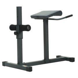 apex jd 31 chairhyperextension bench apex jd 3 1 hyperextension bench gosale price comparison