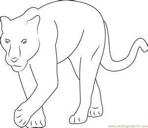 baby panther coloring free panther coloring pages