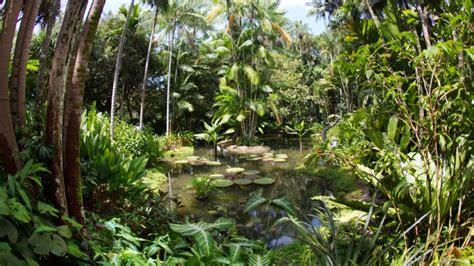 7 reasons to visit singapore botanic gardens visit