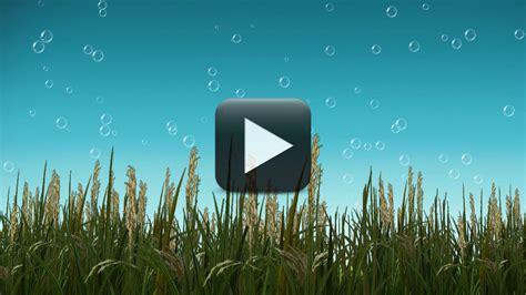 wedding avi background hd free free avi background animations background ideas