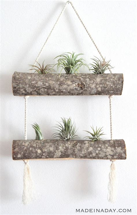 Rope Plant Hangers - diy birch air plant hanger made in a day