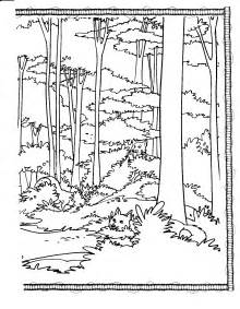 forest coloring pages forest animal coloring pages coloring pages