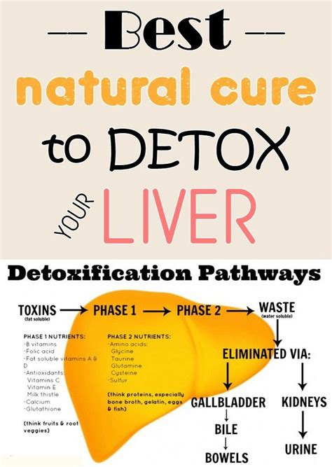 How To Detox The Liver With Lemon by 1000 Images About Exercise And Ways To Become More