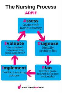 nursing process essay nursing process essay reportspdf771 web fc2