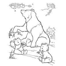 spring bear coloring pages top 10 free ᗐ printable printable polar bear coloring