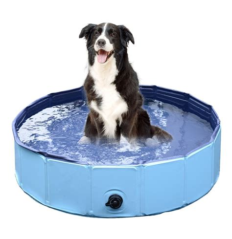 bathtub dogs how to keep pets cool this summer