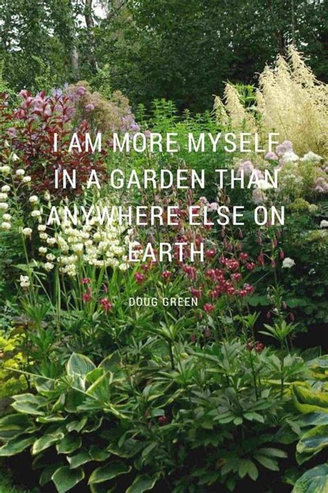 64 Best Images About Gardening Quotes On Pinterest Quotes On Gardens And Flowers