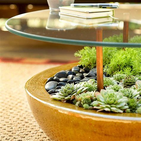 make a terrarium coffee table