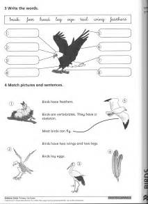science worksheets on birds images frompo
