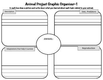 Animal Research Project Graphic Organizers Habitat
