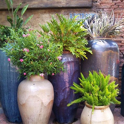 Pot Gardening Ideas The Rainforest Garden 10 Container Gardening Ideas