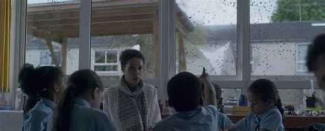 black mirror yelp episode the black mirror episode about bees was dumb the awl