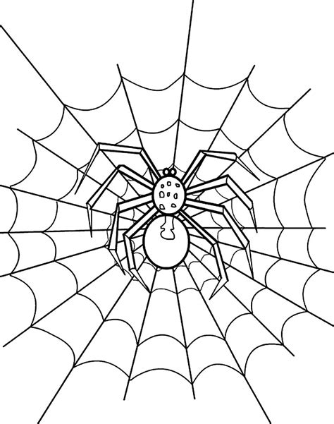 free printable spider web coloring pages for kids free spider colour coloring pages