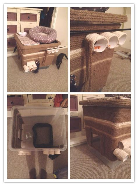 keeping litter box in bedroom best 25 dog proof litter box ideas on pinterest litter box diy litter box and cat