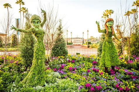 disney flower and garden festival wdwthemeparks 2016 epcot flower garden festival