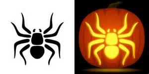free spider pumpkin stencil