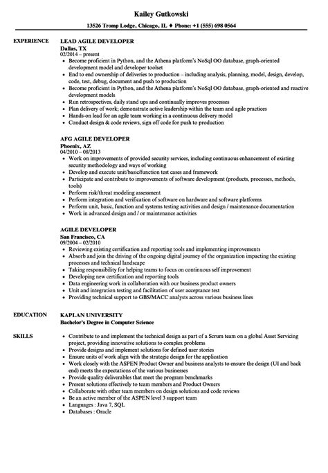 Agile Testing Resume Sample by Sample Resume On Agile Testing Functional Fill Out Resume