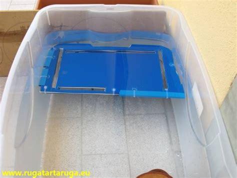 vasche per tartarughe d acqua dolce realizzare ricovero acquatico tartarughe acqua dolce
