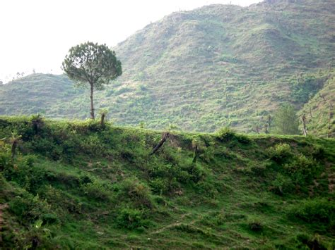 Uttarakhand Search Garhwal Songh 2015 New New Calendar Template Site