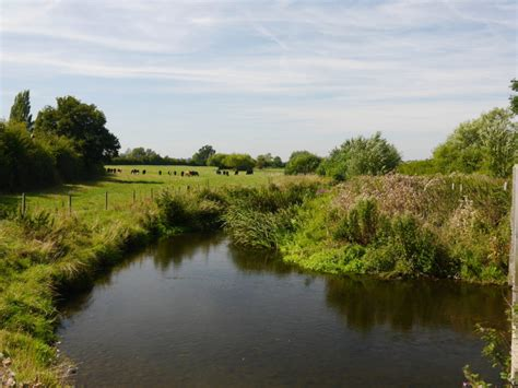 thames river trust save the river thame now the river thame conservation