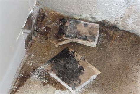 condensa sul pavimento muffa umidit 224 e condensa tutto il mondo cartongesso
