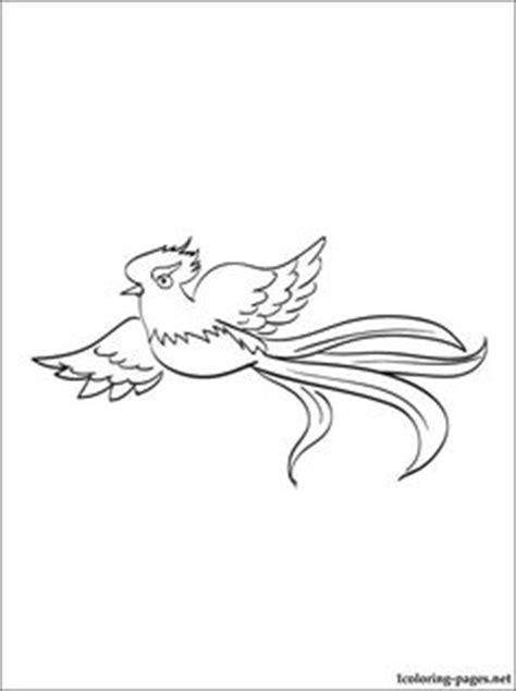quetzal bird coloring page quetzal of guatemala coloring download quetzal of