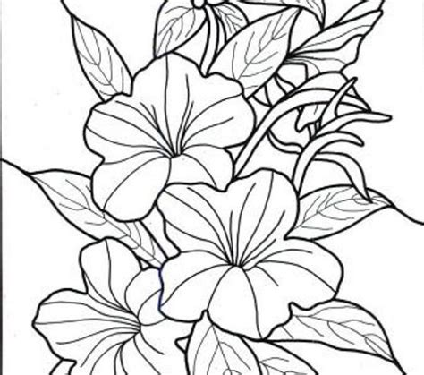 Flowers Coloring Book Pages Coloring Pages Tropical Flowers Tropical Flower Coloring Pages