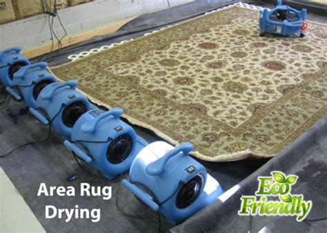 Area Rug Cleaning Nj Professional Area Rug Cleaning Services In Nyc Manhattan